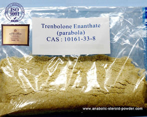 China Polvo amarillo inyectable u oral Trenbolone Steroids10161-33-8 de Trenbolone Enanthate proveedor